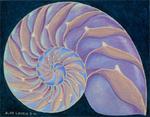 Fractal Spiral Chamber Nautilus